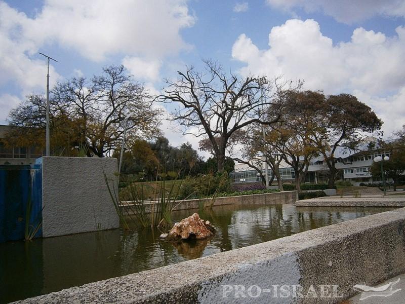 фото кфар саба израиль