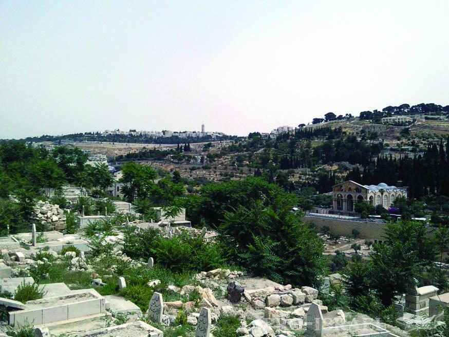 Гора Скопус и корпуса Еврейского университета