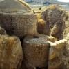 Раскопки Иерихона