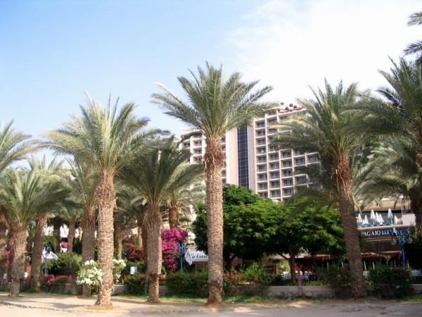Эйлат (Израиль) - отдых в Эйлате, туры в Эйлате, отзывы, цены