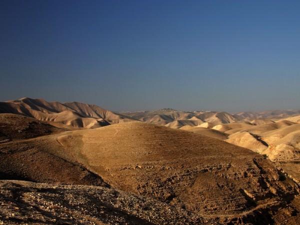 Негев - пустыня в Израиле