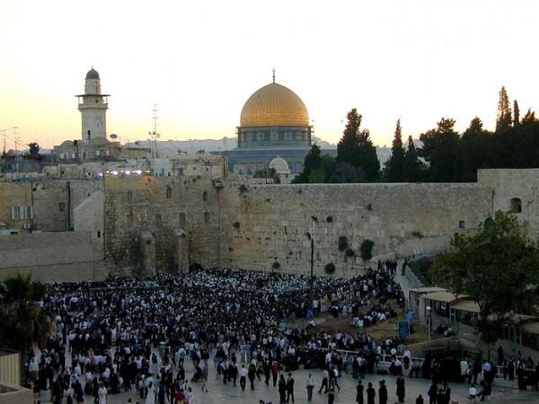 Работа в Израиле для женщин и мужчин
