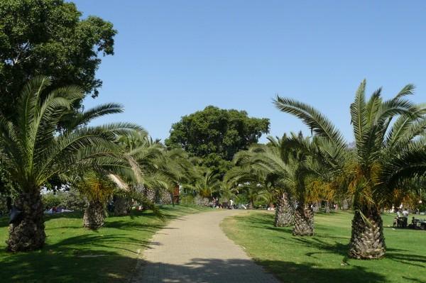 "Израиль: парк ""Сафари"" в Рамат-Гане"