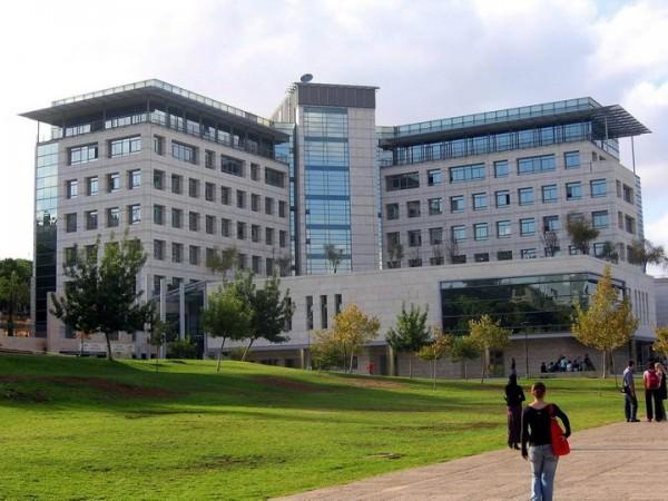 Высшее образование в Израиле, система образования